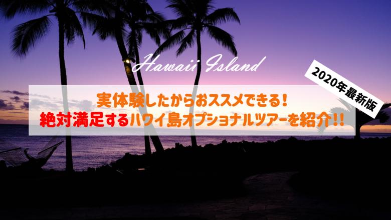 【リアルな口コミ】初めてでも満足できるハワイ島のおすすめオプショナルツアー