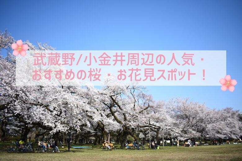 【2021最新版】武蔵野・小金井周辺の人気・おすすめの桜・お花見スポット!